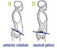 trunk position running