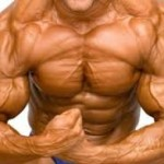 muscle-hypertrophy